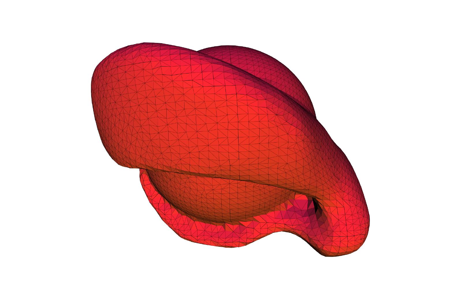 3d model of an eye