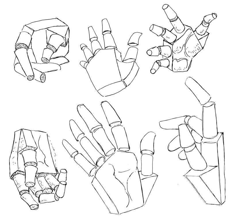 Look at your own hand, or a photo of a hand, and break the hand down into the shapes of the manikin.
