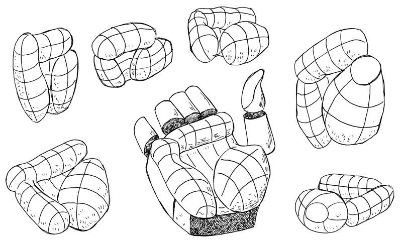 On the inside of the hand, you can see the thumb muscle, the pink muscle and the fatty cushion below the fingers. You can use these as a atart to model the hand.