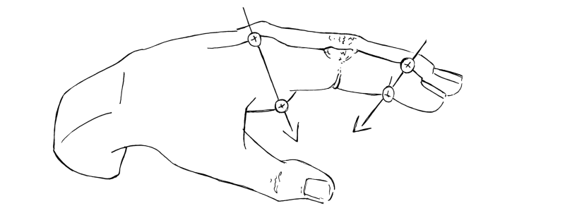 Knuckle positions relative to fat cushions.