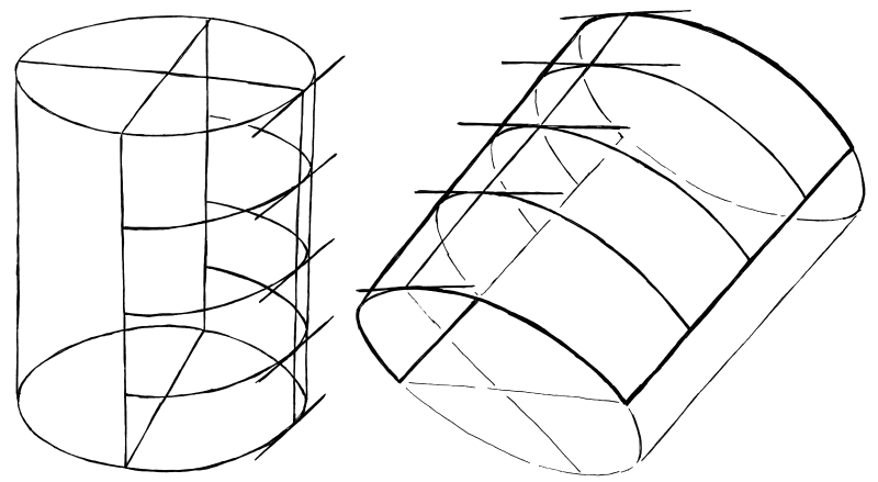 Try to draw lines that follow the bend of the sheet of paper, and tangent lines at the center line. These will help you place the facial features.