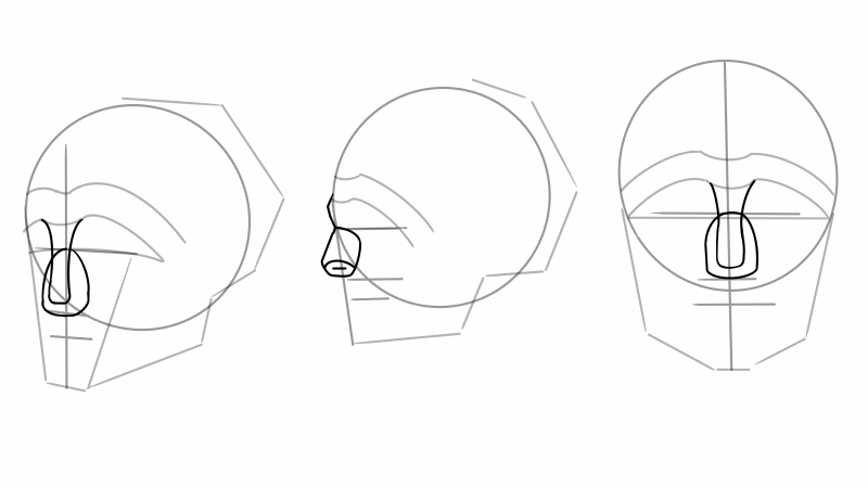 How to construct Reilly rhythm lines for the head.