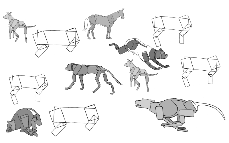 Slide image for the draw simplified animal poses exercise