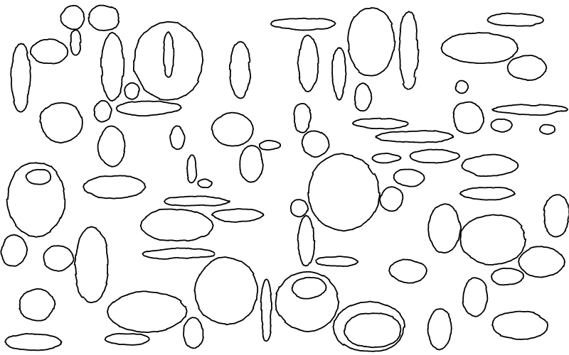 Slide image for the draw circles and ellipses exercise