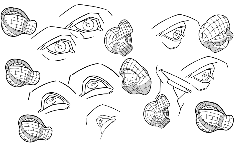Slide image for the practice drawing the various facial features