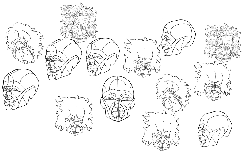 Slide image for the head construction exercises